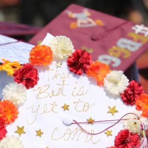 Graduation caps 2019 (6/2020)